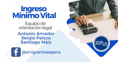 "Webinar ""Ingreso Mínimo Vital"""